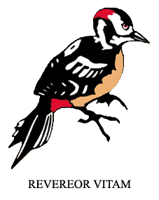 darrick-logo
